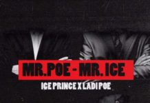 Mr Ice Mr Poe